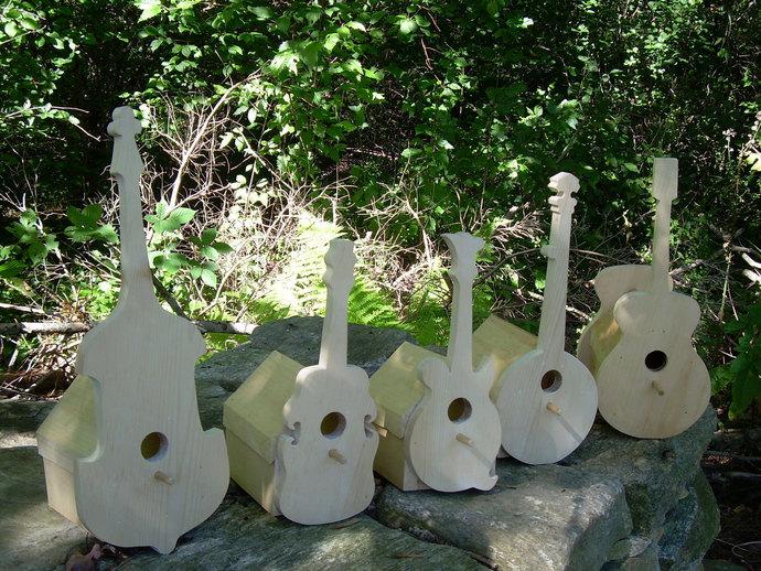 Guitar, Banjo, Mandolin, Fiddle, Bass Bird House; Instrument Bird House for