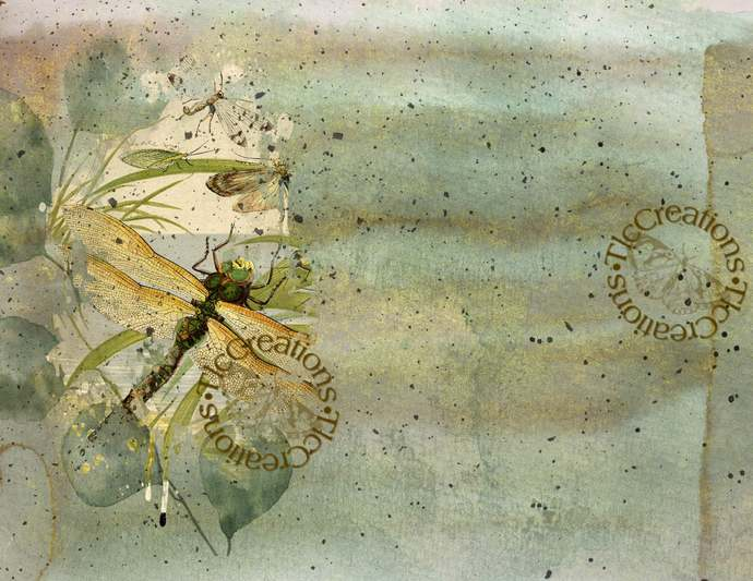 Nature's Dance Dragonflies Vintage Printable Junk Journal Papers
