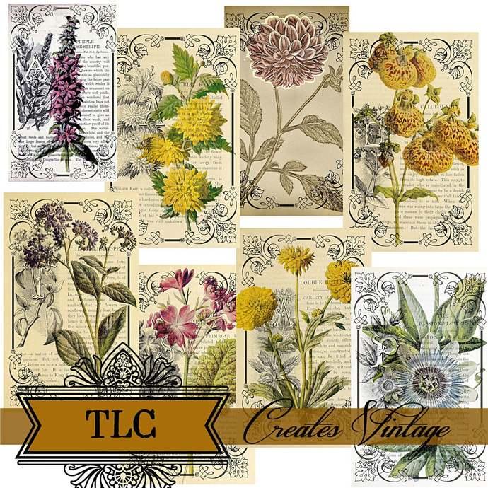 Vintage Botanical Collage Journal Cards Printable Ephemera