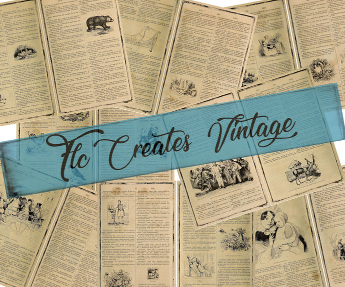 Just the Basics French Dictionary Pages and Ephemera Junk Journal Printable Kit