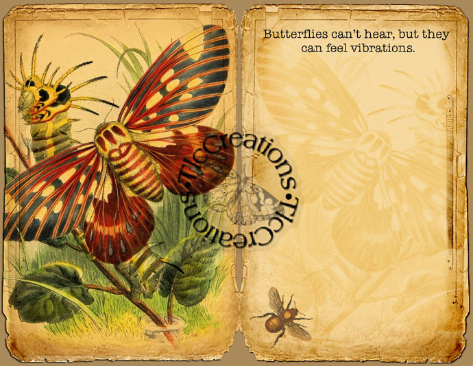 Butterflies, Bees and Bugs Vintage Printable Junk Journal Kit