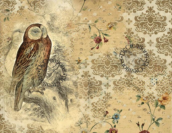 Owl I Want Vintage Printable Journal Kit Scrapbook Diary Notebook