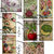 Vintage Seed Catalog Printable Junk Journal Kit, Floral and Vegetables