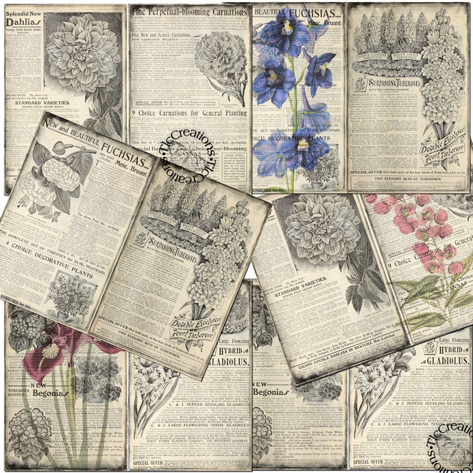 Flower Flash Cards Vintage Printable Journal Cards and Papers, Junk Journal
