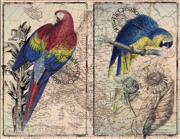 Parrots Pilgrimage Vintage Printable Journal Set