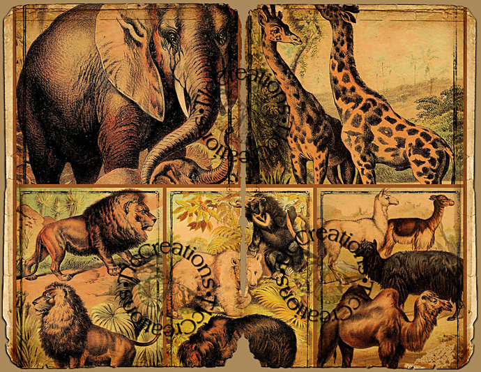 Animal Kingdom, Vintage Animal Printable Journal Papers and Journal Cards