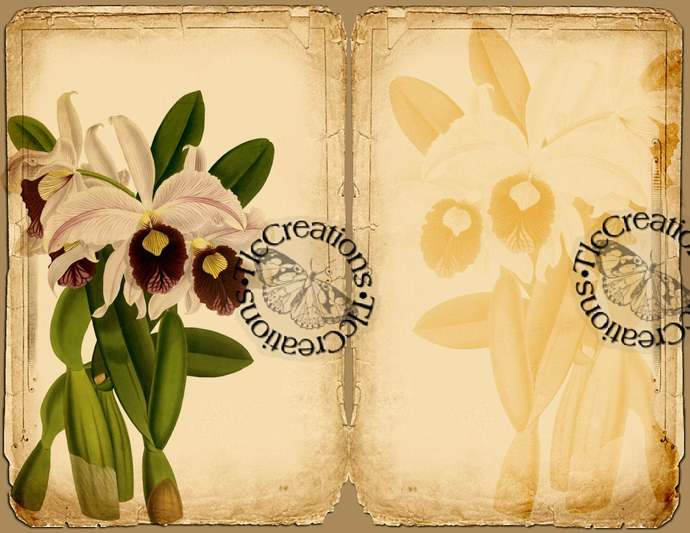 Exotic Orchids, Vintage Printable Journal Kit, Journal Papers, Journal Cards