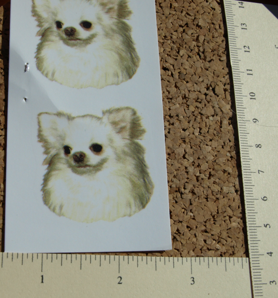 White Chihuahua Ceramic Waterslide Decals (D9-34)