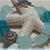 OCEAN MIST Quartz and HILL TRIBE SILVER Bracelet
