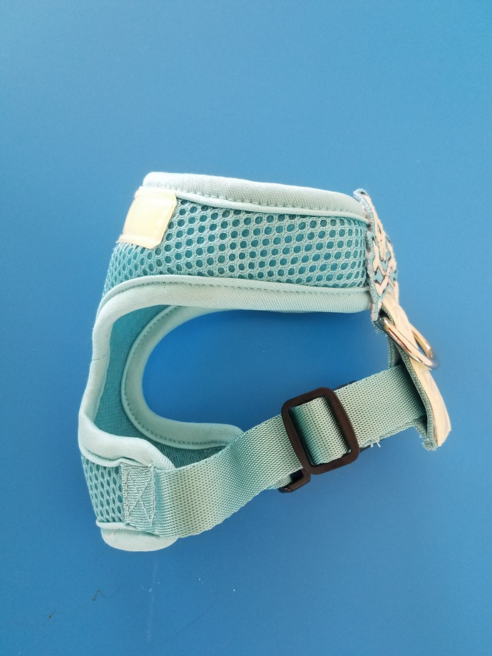 XS Mesh Harness with glow and reflective accents