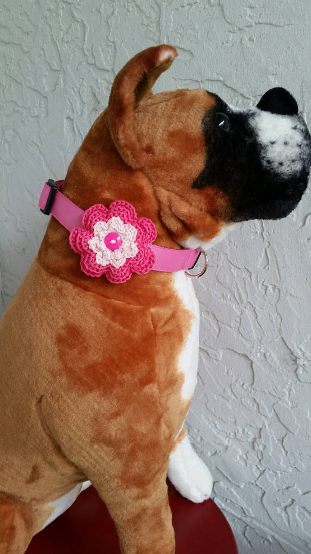 hand crochet dog collar flower  pink flower boy boutonniere photo prop ~ Boxer