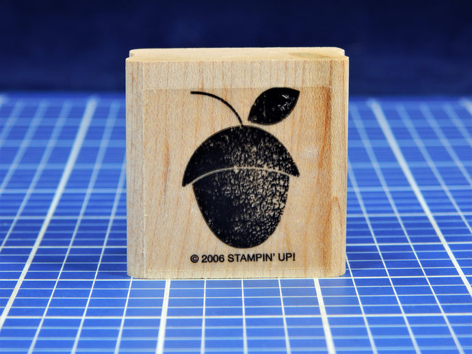 ACORN, Wood Mounted Rubber Stamp, Stampin' Up!