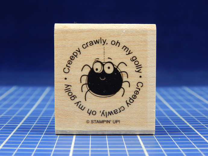 CREEPY CRAWLY SPIDER, Rubber Stamp by Stampin' Up!