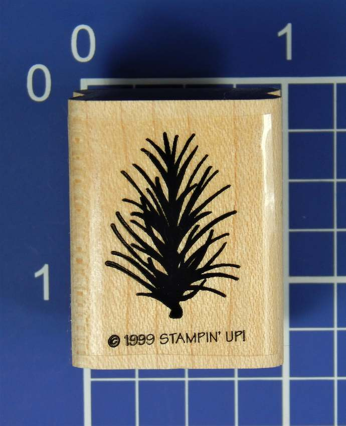 PINE NEEDLES, Wood Mounted Rubber Stamp, by Stampin' Up!