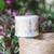 Meow Illustration washi tape - Austin Roses - 4 cm wide masking tape