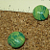 Green Disk Glass Beads 8-134