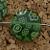 Green Millefiori Beads