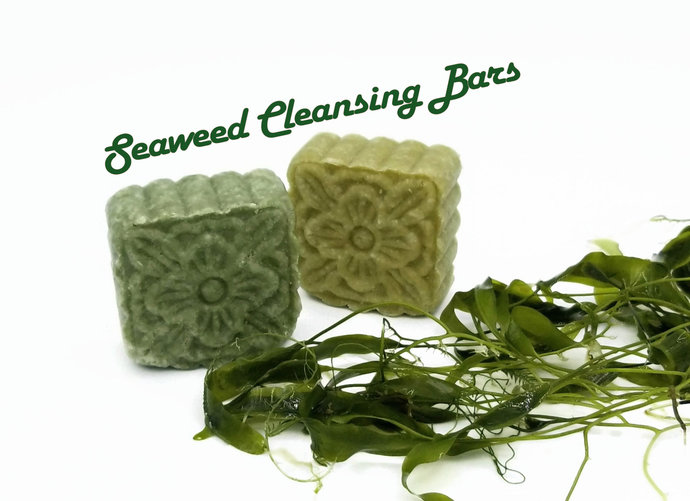 Seaweed Head 2 Toe Shampoo Body Wash Face Cleanser | 3 in 1 Bar | Sulfate Free |