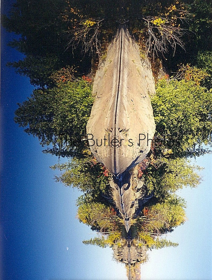 Autumn Trees On A River Photograph, Beautiful Mirror Water Reflection Photo,