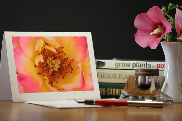 Photo Note Card - Summer Glow