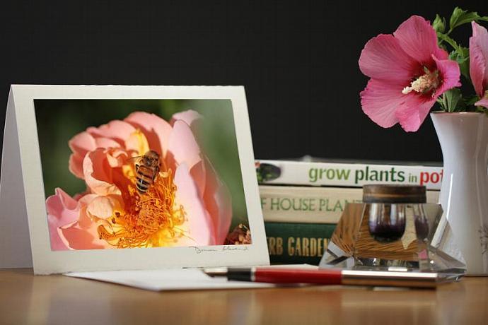 Photo Note Card - Honeybee Heaven