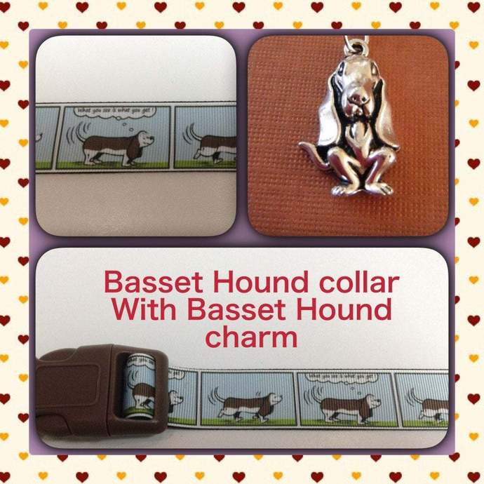 "Basset Hound, Dog, What you see is what you get 1"" wide adjustable Dog Collar"