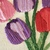 Hand Embroidery PDF Pattern. Tulip Bouquet Digital Download. Simple and Easy