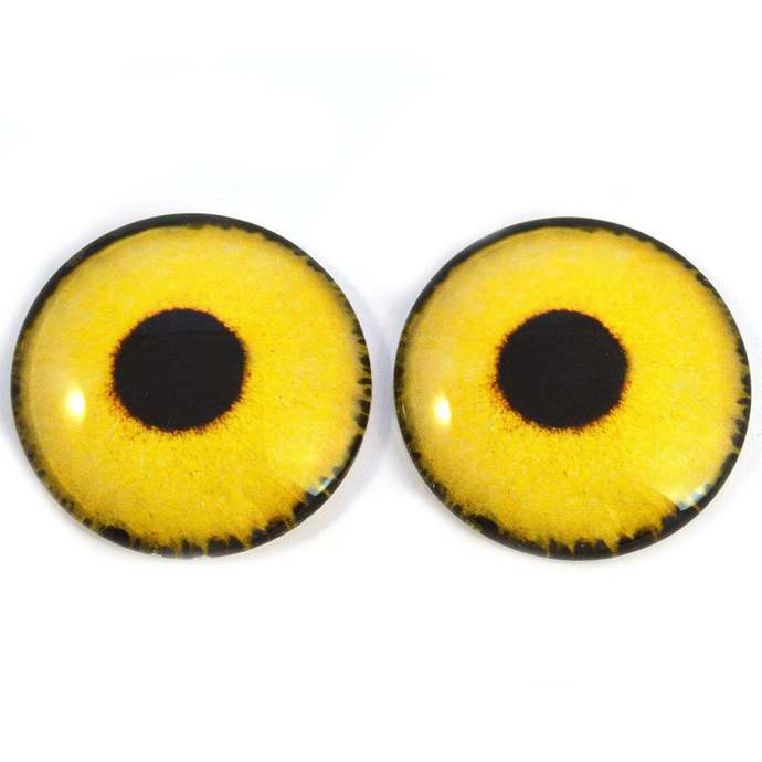 Yellow Sparrow Hawk Bird Glass Eyes 6mm to 40mm Jewelry Making Art Dolls