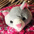 Child's Pink And Grey Random Coloured Knitted Cat Hat - FREE SHIPPING