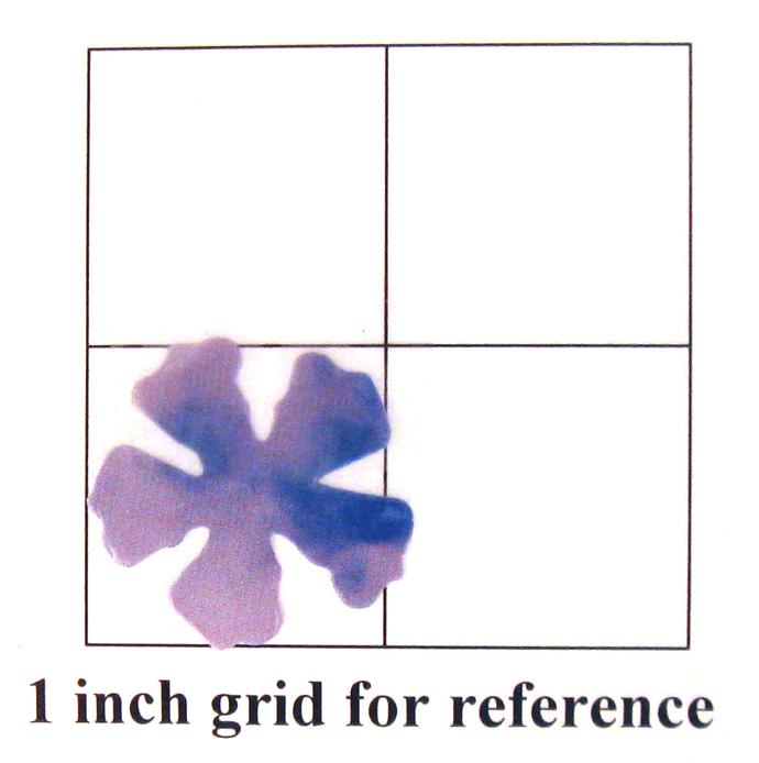36 Blue Vinyl Die Cut Flowers