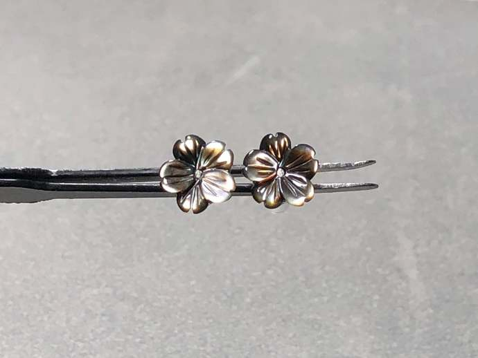 8mm Black Potentilla Shell Carved Flower Post Earrings with Sterling Silver