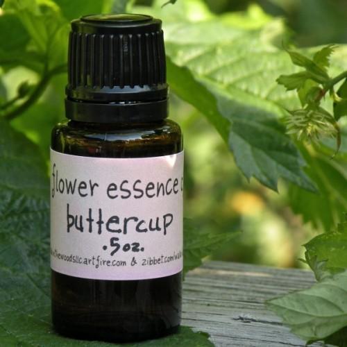Buttercup Flower Essence - .5 ounce