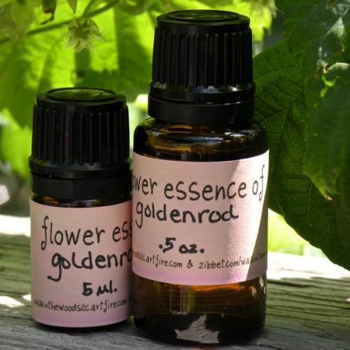 Handmade Goldenrod Flower Essence - 5 ml.