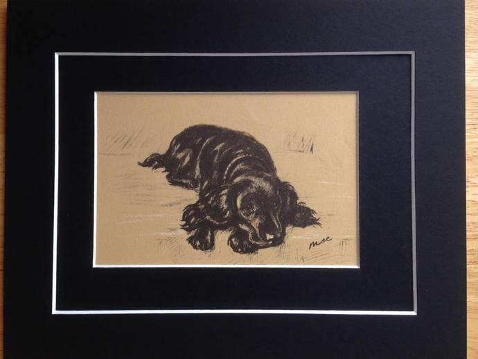 1936 Cocker Spaniel dog Caesar Signed Mounted 'Mac' Lucy Dawson dog plate print