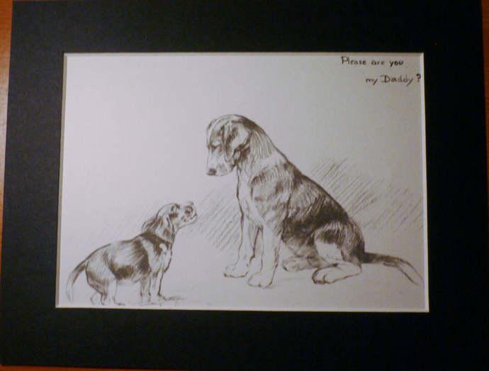 FOXHOUND DOG Vintage K F Barker 1933 hound puppy mounted dog plate print Unique