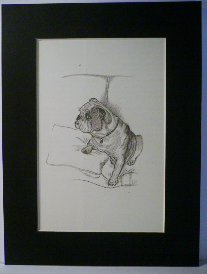 1949 Sam BULLDOG dog Vintage original C Francis Wardle bookplate dog print