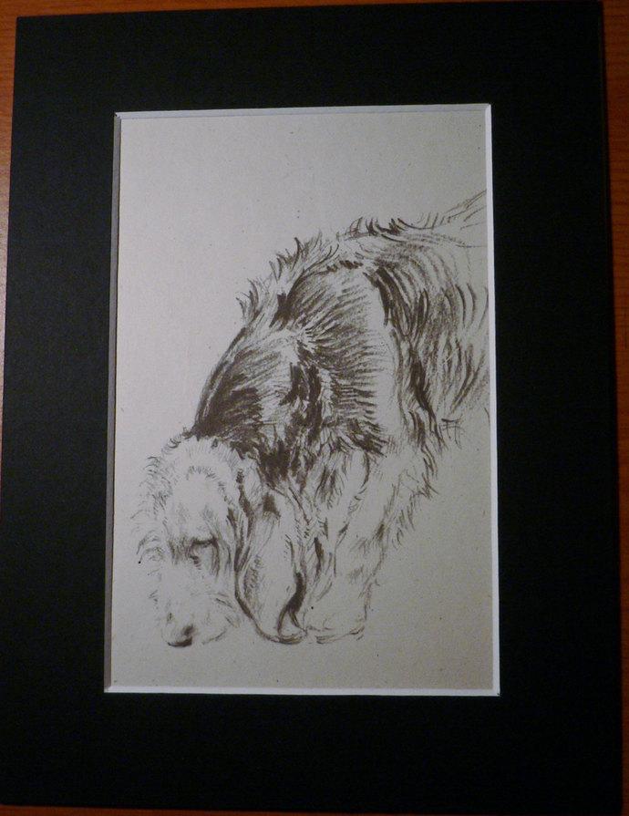 VINTAGE K F Barker 1933 Hunter Beagle hound dog mounted dog plate print Unique