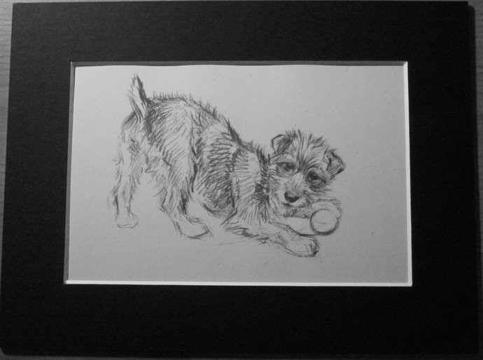 WELSH TERRIER Vintage K F Barker 1933 dog playing ball mounted dog plate print
