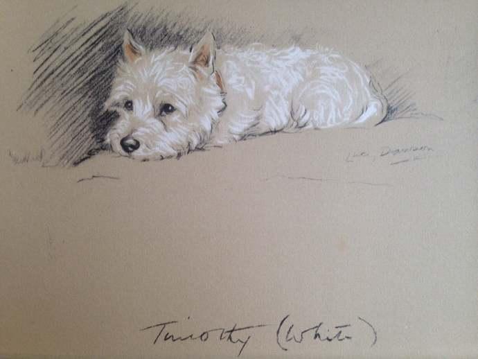 WESTIE DOG 1937 Lucy Dawson Mac West Highland terrier Vintage signed mounted dog