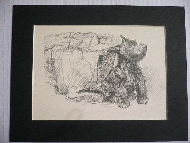 SCOTTISH TERRIER DOG pup Vintage K F Barker 1937 terrier mounted dog plate print