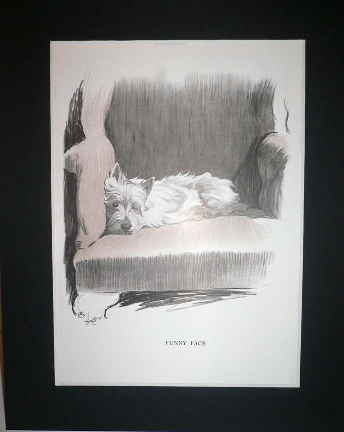 Westie Signed Cecil Aldin 1930s West Highland terrier mounted dog plate print