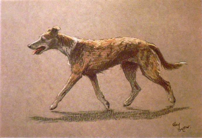 WHIPPET LURCHER DOG Signed mounted 1928 Cecil Aldin racing dog plate print