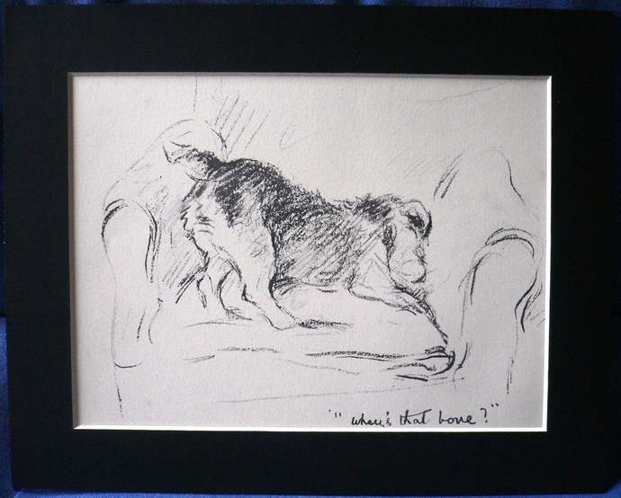 WELSH TERRIER Signed mounted 1939 Lucy Dawson Mac Paddy terrier with bone dog