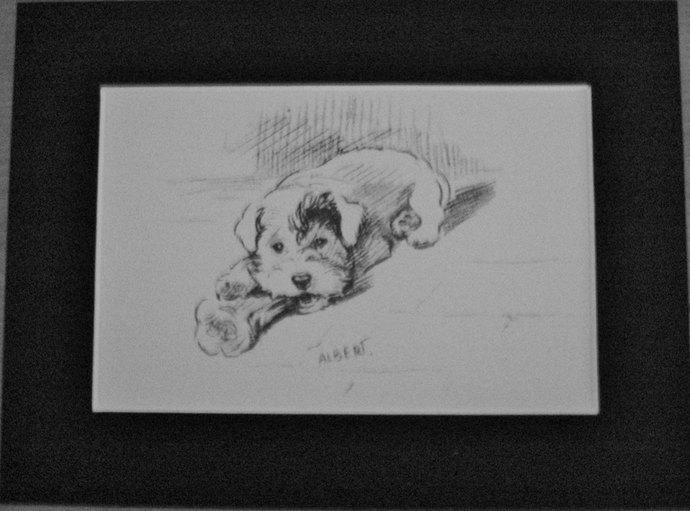Sealyham terrier & bone Vintage Mounted 1936 'Mac' Lucy Dawson Albert dog