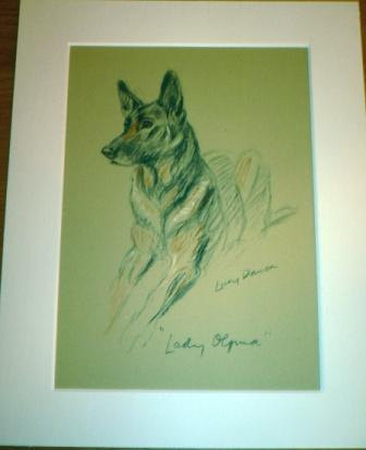 Signed  Mounted 1937 'Mac' Lucy Dawson Lady Olfina Alsatian German shepherd dog