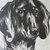 CORGI dog print Vintage 1935 dog bookplate Unique collectors gift, birthday