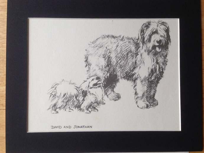 K F Barker vintage 1933 Pekingese peke pekinese sheepdog mounted plate print