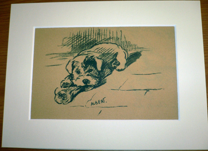 Sealyham terrier Vintage Mounted 1937 'Mac' Lucy Dawson Albert dog plate/print