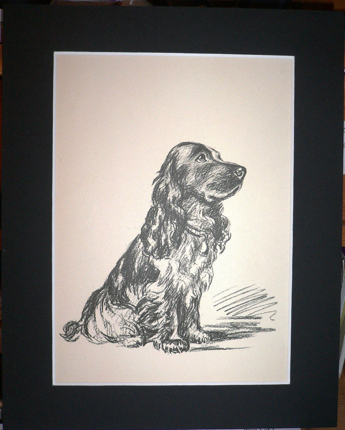 SPANIEL DOG Signed Mounted 1936 'Mac' Lucy Dawson Springer spaniel dog plate