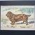 ANTIQUE 1907 SUSSEX SPANIEL signed dog print Chromolithograph P Mahler German